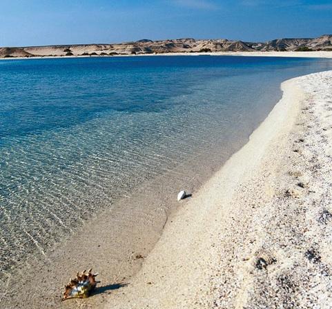 mare_oriental_coast_marsa_alam