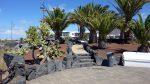 Canarie - Lanzarote prezzi delle case in aumento