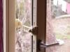 ferma-finestre-17