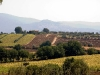 panoramiche-1